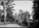 Awahuri Road, Manawatu