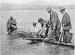 Maori fishermen hauling in a catch of crayfish (tau koura)