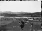 Township of Manunui