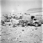 Whitlock, W A, fl 1942: New Zealand transport (22 Battalion) south east of Mersa Matruh, Egypt, prior to dispersal