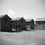Japanese prisoner of war camp near Featherston