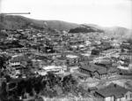 Panoramic view over Mount Victoria, Wellington