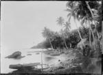 Coastal scene, Ovalau, Fiji