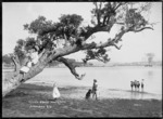 Children playing on tree at Hall's Beach, Northcote, Auckland
