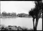 View of Cabbage Tree Lake, Auckland
