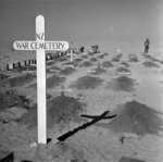 New Zealand war cemetery near the Alamein front, Egypt