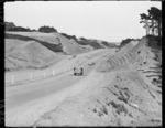 New Johnsonville highway