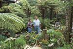 Dianne and Brian Mason in their Stokes Valley garden