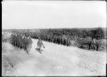 German prisoners walking down a road, Hebuterne, France