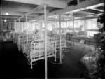 Interior of the hospital ship Maheno