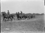 The driving competition at the New Zealand Divisional horse show, France