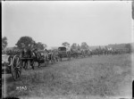 Winners' parade at the New Zealand Infantry Brigade horse show, France