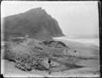 Loisel's Beach (also known as Waihau Beach), East Coast