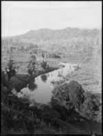 Landscape with river/stream, and cleared area, probably Christchurch district
