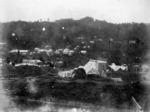 Waitekauri, Waikato