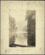 Scenic view of the Whanganui River