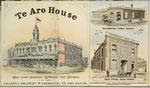 F W Niven & Co. :[Te Aro House, and Thompson Bros & Company. 1895]
