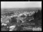 View overlooking Te Aroha