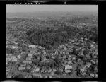 Auckland City, including Mt Eden
