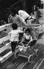 Whakarewarewa Family 1970.tif