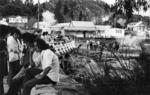 Whakarewarewa bridge 1970.tif