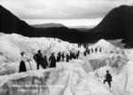 Ring, James: Francis Joseph Glacier