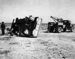 Trucks of NZ Supply Co. in the desert