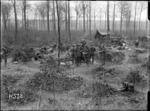Soldiers in a wood, Louvencourt, France