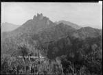 Bush clad hills in Coromandel, including Castle Rock