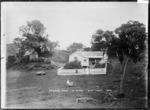Bethell's House at Te Henga
