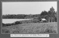 Maori storehouse Te Takinga at Lake Papaitonga, near Levin