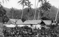 Dwellings, taro patch and group, Rarotonga, Cook Islands