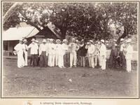 Sampling coconut milk, Rarotonga, 1903