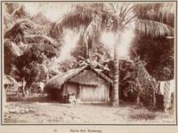 Rarotongan dwelling, 1903
