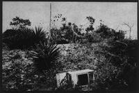 Nauru (old oven in pinnacles)