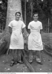 POPONDETTA, NEW GUINEA, 1945-07-02. SGT J. BAIN, WHO SUPERINTENDS NATIVE MEDICAL ORDERLIES AND SPECIALISES IN PATHOLOGY AND SURGERY (1), WITH WO 2 J. RUDGE, WHO IS IN CHARGE OF THE ANGAU NATIVE ..