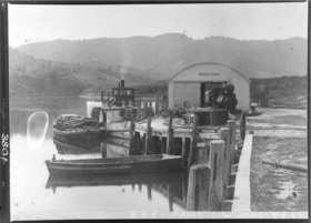 cover image for Paddlesteamers on the Waikato River