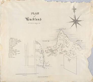 Image: Tamaki History