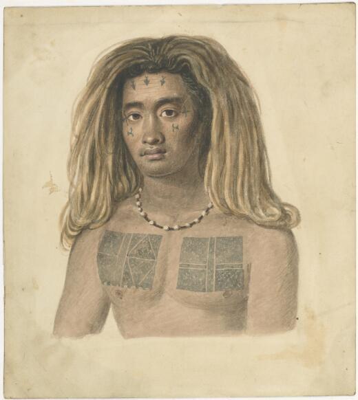 A native of the Island of Tucopea [i.e. Tikopia] [Augustus Earle]