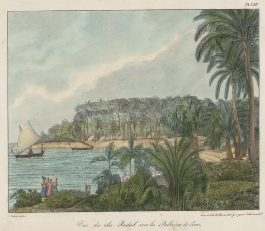Vue des Iles Radak avec les palmiers de cocos / L. Choris delt