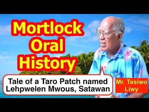 Tale of a Taro Patch named Lehpwelen Mwous, Satawan