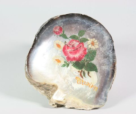 Painted shell