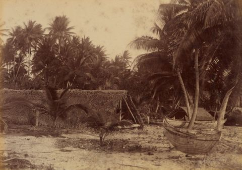 Arorai. From the album: Views in the Pacific Islands
