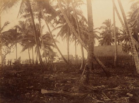 Namorik. From the album: Views in the Pacific Islands