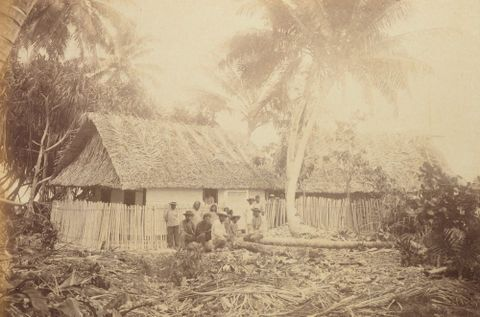 Trading Stations Ebon. From the album: Views in the Pacific Islands