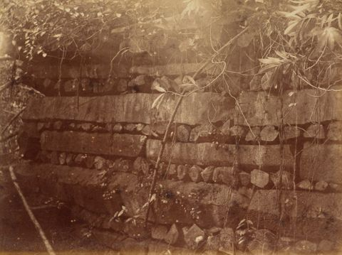 Inside Ruins Pohnpei. From the album: Views in the Pacific Islands