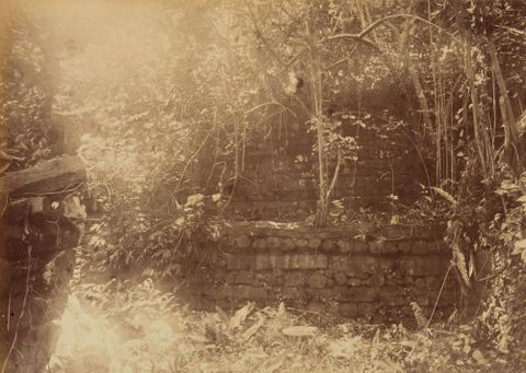 Ruins Pohnpei. From the album: Views in the Pacific Islands