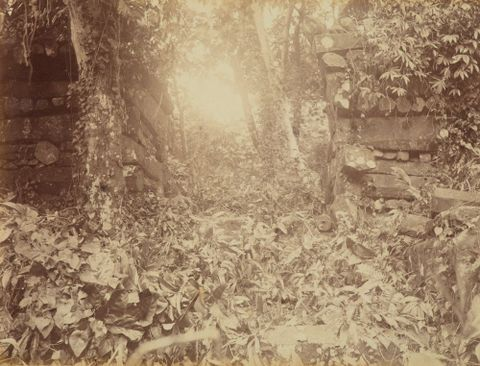 Pohnpei Ruins. From the album: Views in the Pacific Islands