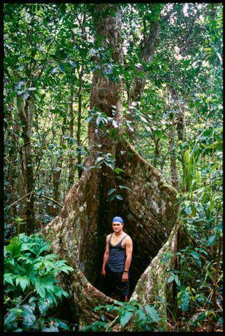 Mario Cross, Niue