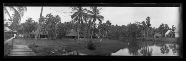 View in Samoa [probably near Apia], taken from a narrow pier looking across calm water back to palm and coconut trees